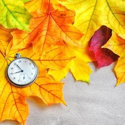 Пазл онлайн: Время осени