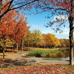 Пазл онлайн: Осенний парк с озером