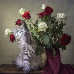Пазл онлайн: Хочу вон тот цветок