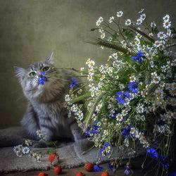 Пазл онлайн: Васильки пахнут полем