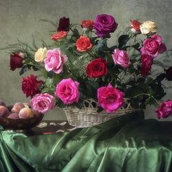 Пазл онлайн: Яркая палитра садовых роз