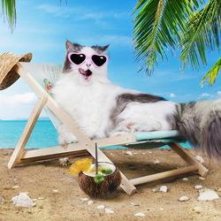 Пазл онлайн: Приятный отдых