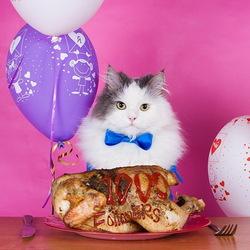 Пазл онлайн: Праздничный обед