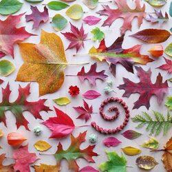 Пазл онлайн: Осеннее вдохновение