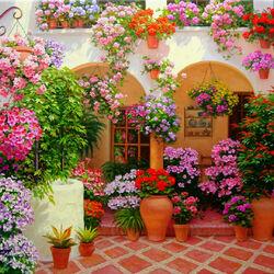 Пазл онлайн: Цветы Андалусии