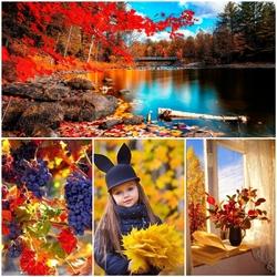 Пазл онлайн: Красочная осень