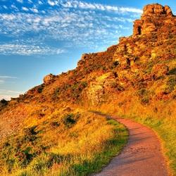 Пазл онлайн: Дорожка в горах
