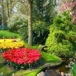 Пазл онлайн: В парке Голландии
