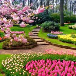 Пазл онлайн: Весна в парке  Кёкенхоф