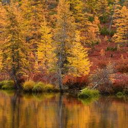 Пазл онлайн: Осенний пейзаж