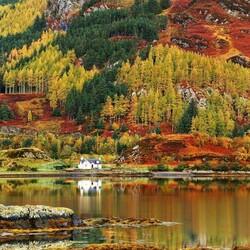 Пазл онлайн: Осенние красоты