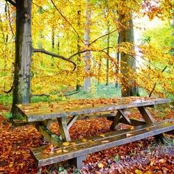 Пазл онлайн: Столик для пикника