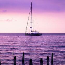 Пазл онлайн: Сиреневое море