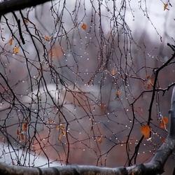 Пазл онлайн: Дождливые аккорды сентября