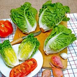 Пазл онлайн: Овощная полезность
