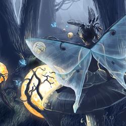 Пазл онлайн: Ночь в волшебном лесу