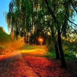 Пазл онлайн: Осень наступает