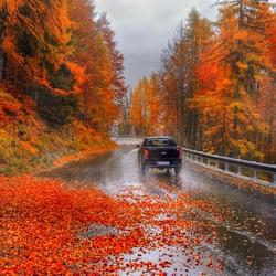 Пазл онлайн: Осенний серпантин в Альпах