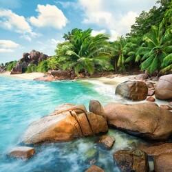 Пазл онлайн: Тропический берег