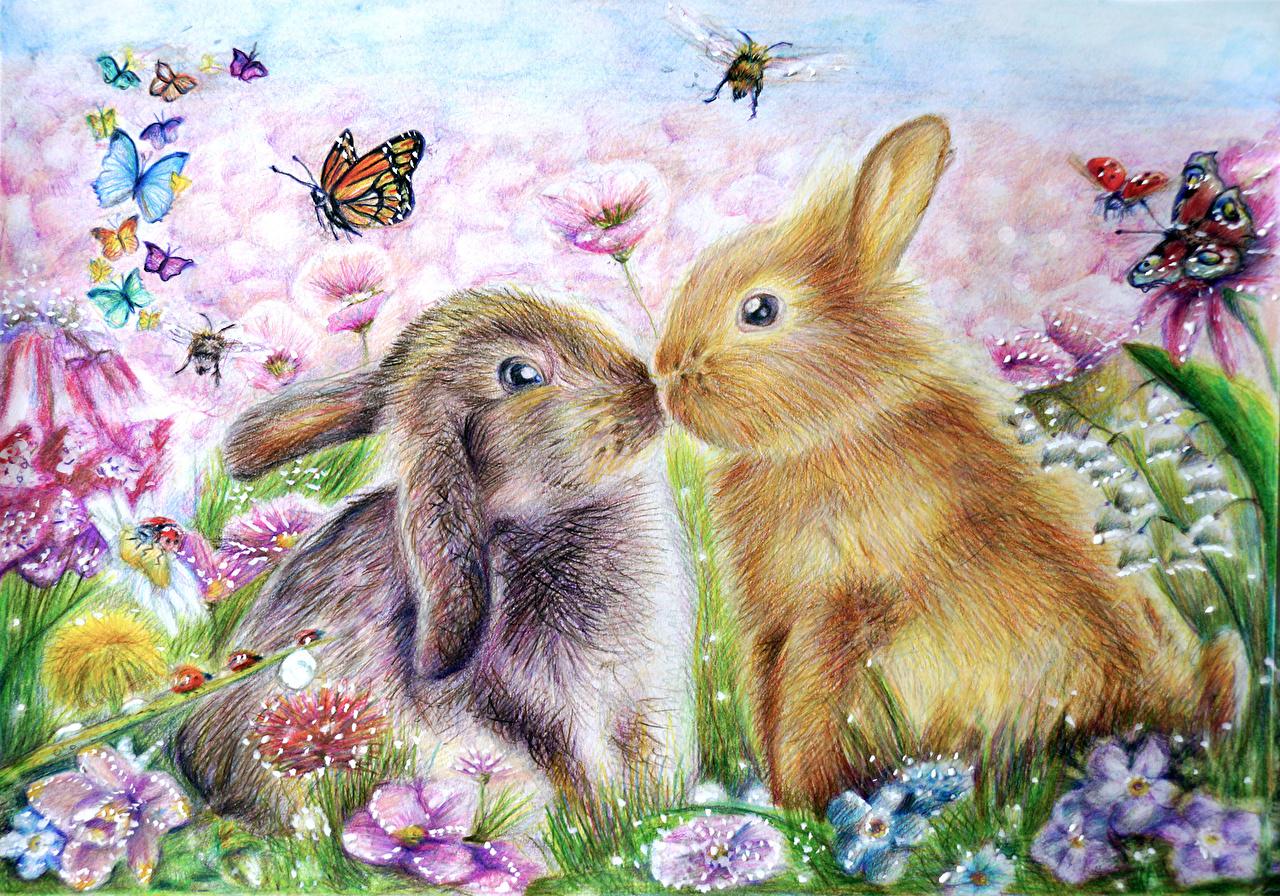 Картинки красивые с зайчиком