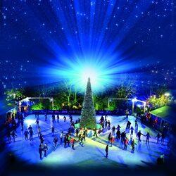 Пазл онлайн: Новый год на катке