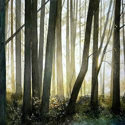 Пазл онлайн: Солнце за деревьями