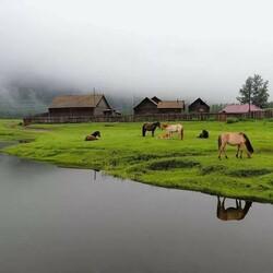 Пазл онлайн: Моя деревня