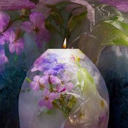Пазл онлайн: Цветы и лед