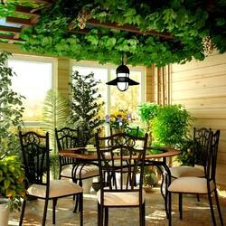 Пазл онлайн: Зимний сад