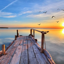 Пазл онлайн: Птицы над озером