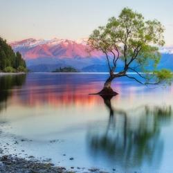 Пазл онлайн: Озеро Ванака