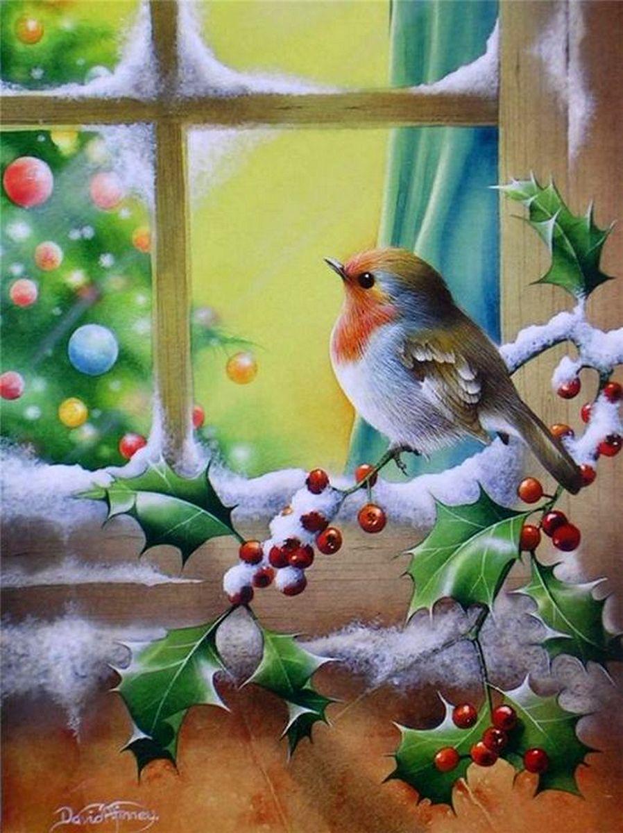 Открытки ватсапе, открытки птицы на ветке зимой