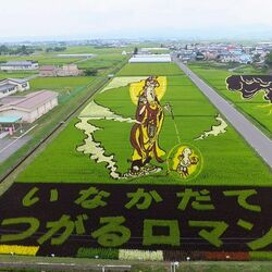 Пазл онлайн: Картины на рисовых полях