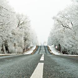 Пазл онлайн: Дорога в зиму