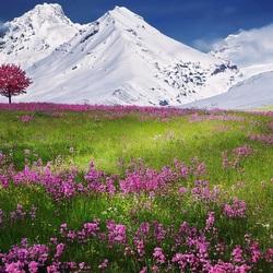 Пазл онлайн: Лето и зима