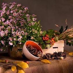 Пазл онлайн: Натюрморт с цветами и шишками