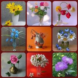 Пазл онлайн: Цветы на радость нам даны