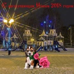 Пазл онлайн:  Из города Тамбова
