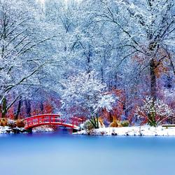 Пазл онлайн: Запахи зимы