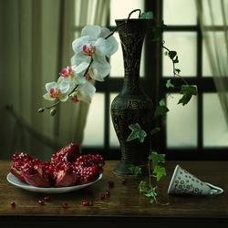 Пазл онлайн:  Гранат и орхидея