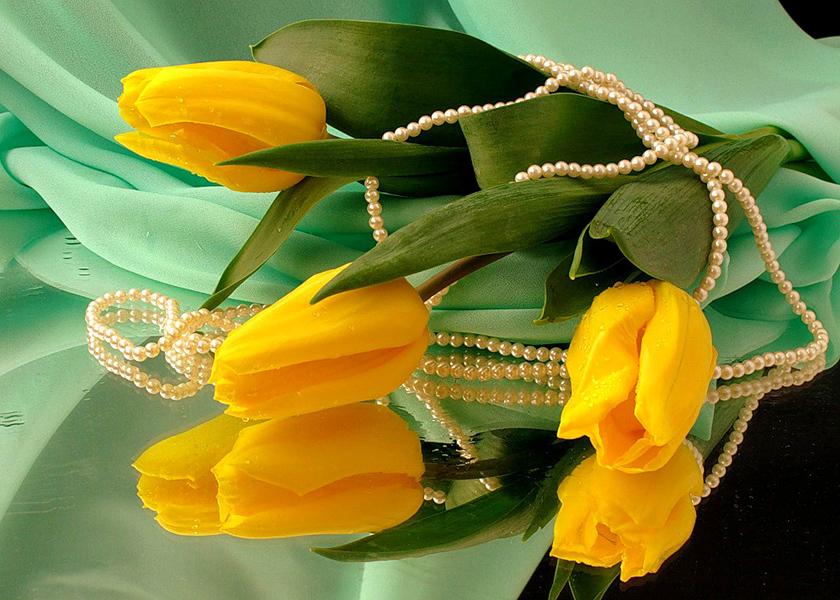 картинки желтых роз и тюльпанов могли быть