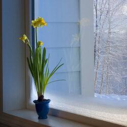 Пазл онлайн: В ожидании весны