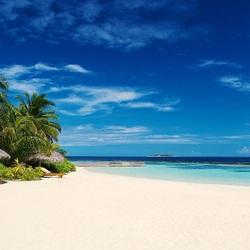 Пазл онлайн: Пляж в тропиках