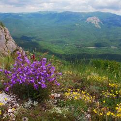 Пазл онлайн: Караби-яйла весной