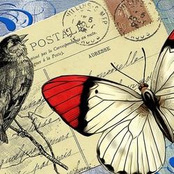 Пазл онлайн: Письмо, птица, бабочка