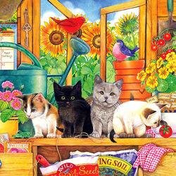 Пазл онлайн: Котята в теплице