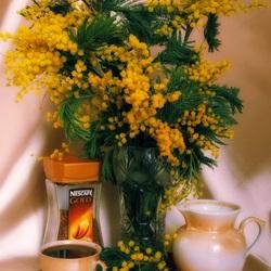 Пазл онлайн: Чашка кофе и мимозы