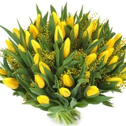Пазл онлайн: Тююльпаны и мимозы