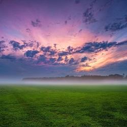 Пазл онлайн: Туман над полем