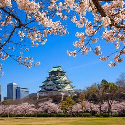 Пазл онлайн: Осака